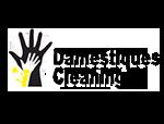 damestiques-professional-house-cleaning-park-city