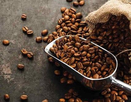park-city-coffee-roasters-shop-online